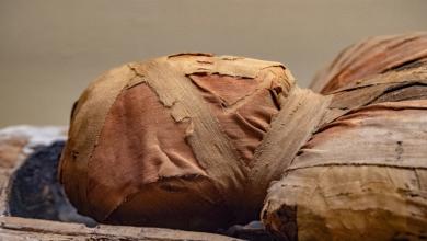 """صورة الأشعة المقطعية تكشف عن لغز """"الفرعون الشجاع"""""""