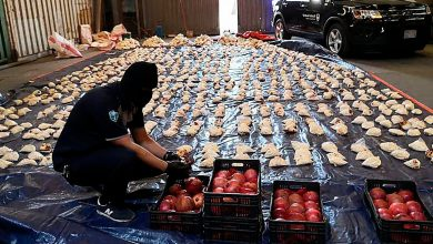 صورة لبنان تدعو السعودية لإعادة النظر بقرارها حظر استيراد المنتجات الزراعية اللبنانية